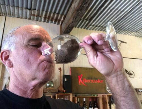 Can you taste soil in wines?